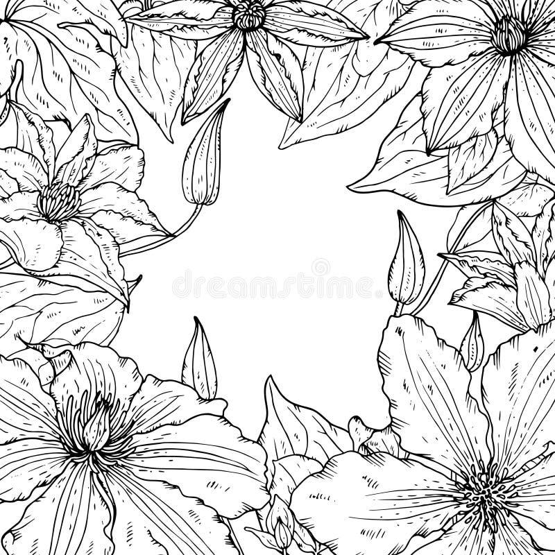 Vektorramen med den härliga klematins blommar för hälsningkort eller bröllopinbjudan stock illustrationer