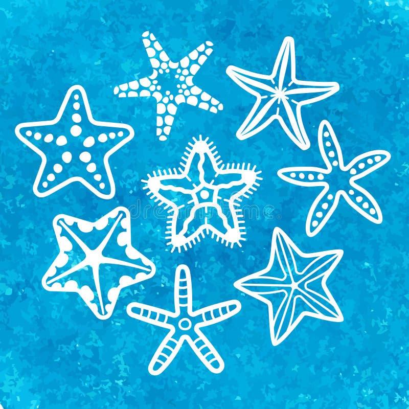 Vektorsamling av den olika havssjöstjärnan vektor illustrationer