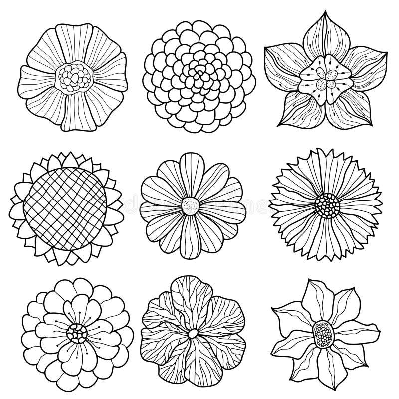 Vektorsamling av hand drog blommor stock illustrationer