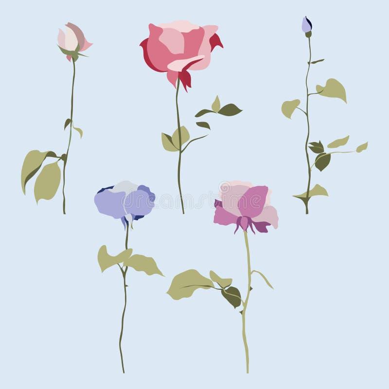 Vektorsatz Blumen, mehrfarbige Rosen mit Blättern lizenzfreie abbildung