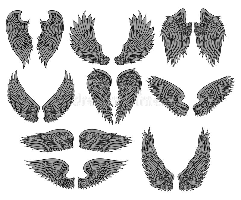 Vektorsatz des unterschiedlichen Engels oder des Vogels beflügelt mit grauen Federn und schwarzer Kontur Editable Vektorillustrat stock abbildung