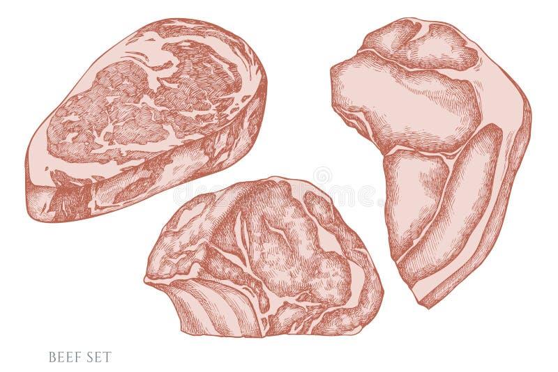 Vektorsatz Handgezogenes Pastellrindfleisch stock abbildung