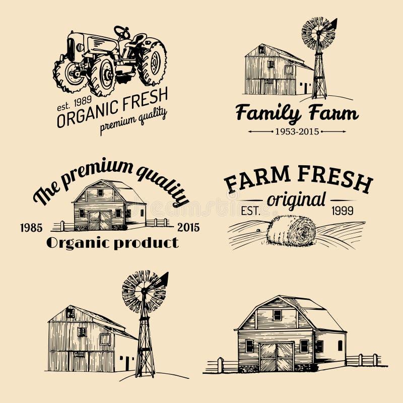 Vektorsatz neue Firmenzeichen des Bauernhofes Bioproduktausweissammlung Weinlesehand skizzierte landwirtschaftliche Ausrüstungsik lizenzfreie abbildung