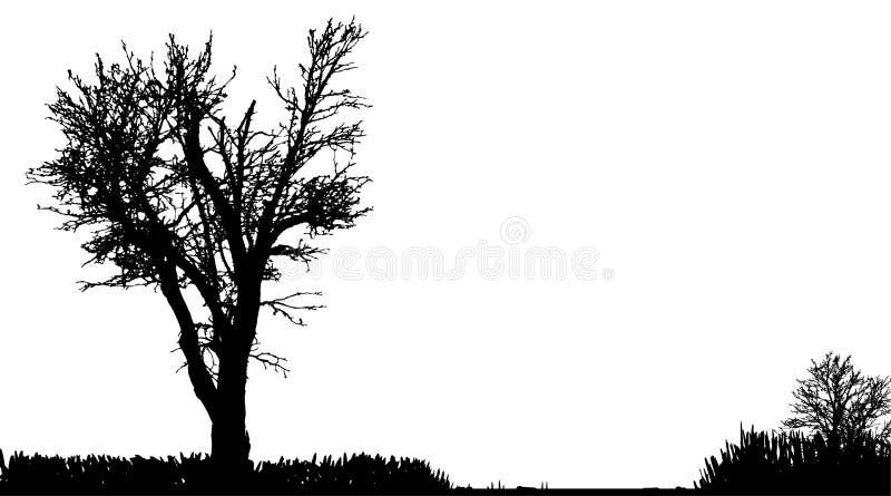 Download Vektorschattenbild Der Natur Vektor Abbildung - Illustration von abbildung, wald: 47101094