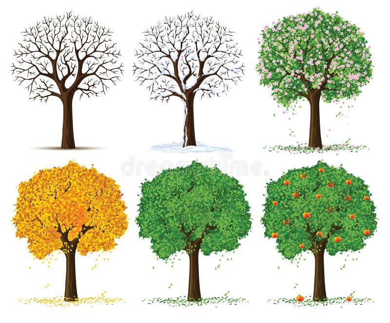 Vektorschattenbild-Jahreszeitbäume stock abbildung