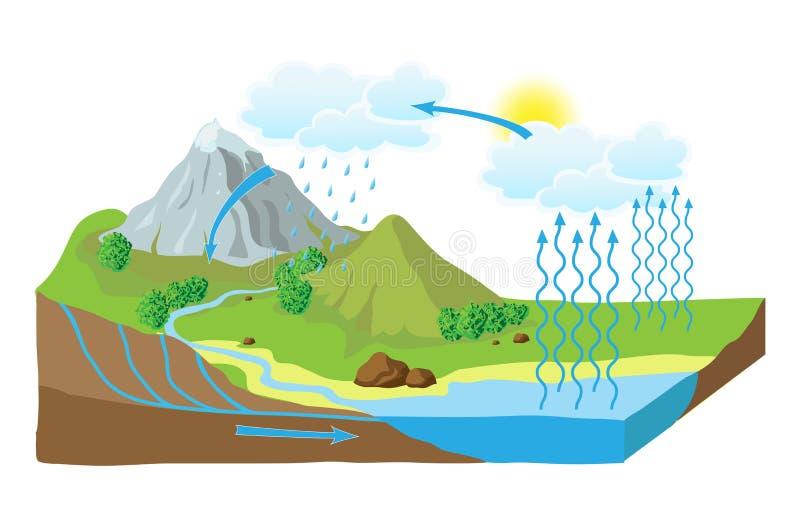 Vektorschema av vattencirkuleringen i natur vektor illustrationer