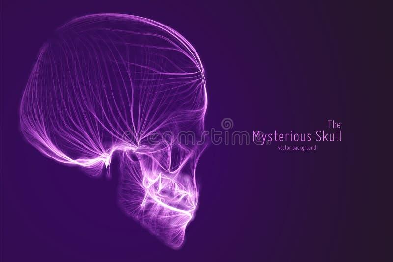 Vektorskalle som konstrueras med violetta linjer Mystisk källa av livbakgrund Illustration för internetsäkerhetsbegrepp vektor illustrationer