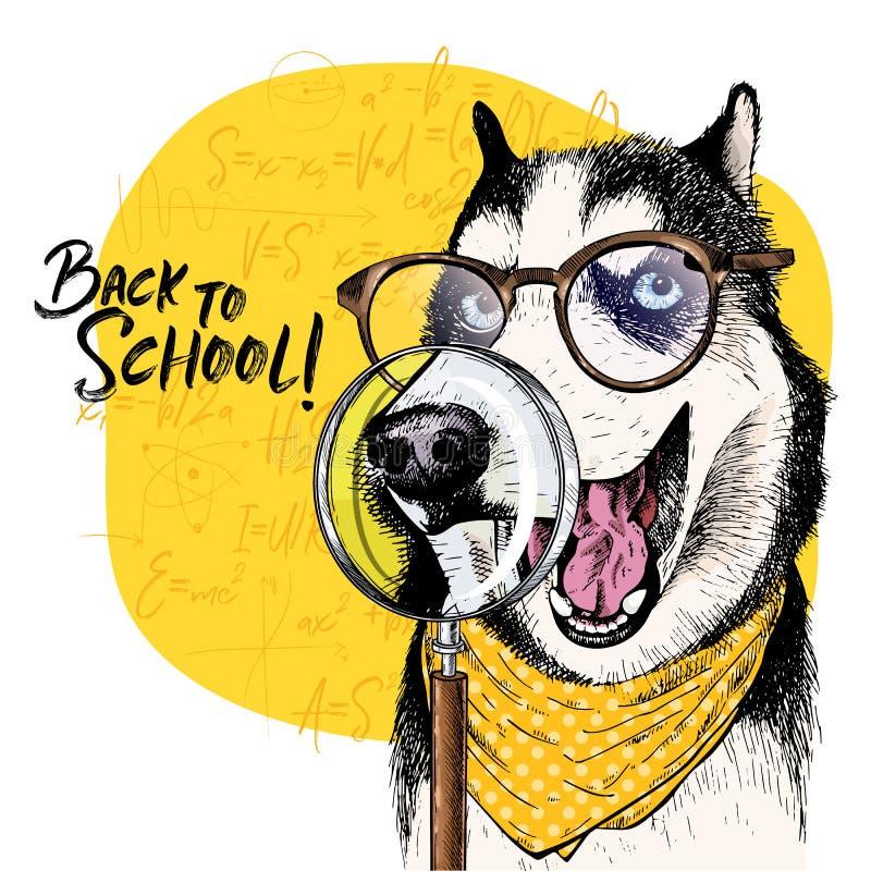 Vektorstående av den Siberian skrovliga hunden med förstoringsglaset och stor näsreflexion tillbaka illustrationskola till math royaltyfri illustrationer