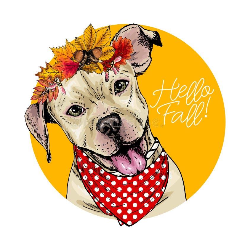 Vektorstående av kronan för sidor för höst för Pit Bull Terrier hund den bärande Hello faller illustrationen Ek l?nn, kastanj royaltyfri illustrationer