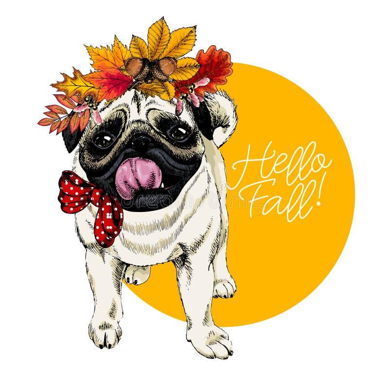 Vektorståenden av sidor för hösten för mopshunden bärande krönar Hello faller illustrationen Eken lönn, kastanj, rowen tecknad ha stock illustrationer