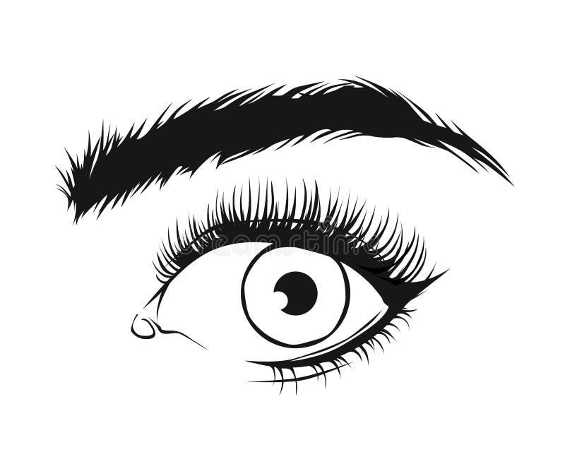 Vektorsvartteckning av härliga kvinnas öga med eyeliner och långa ögonsnärtar på vit bakgrund royaltyfri illustrationer