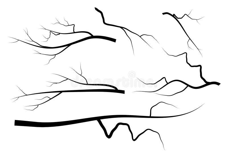 Vektorsymbol-Ikonendesign der bloßen Niederlassung gesetztes stock abbildung