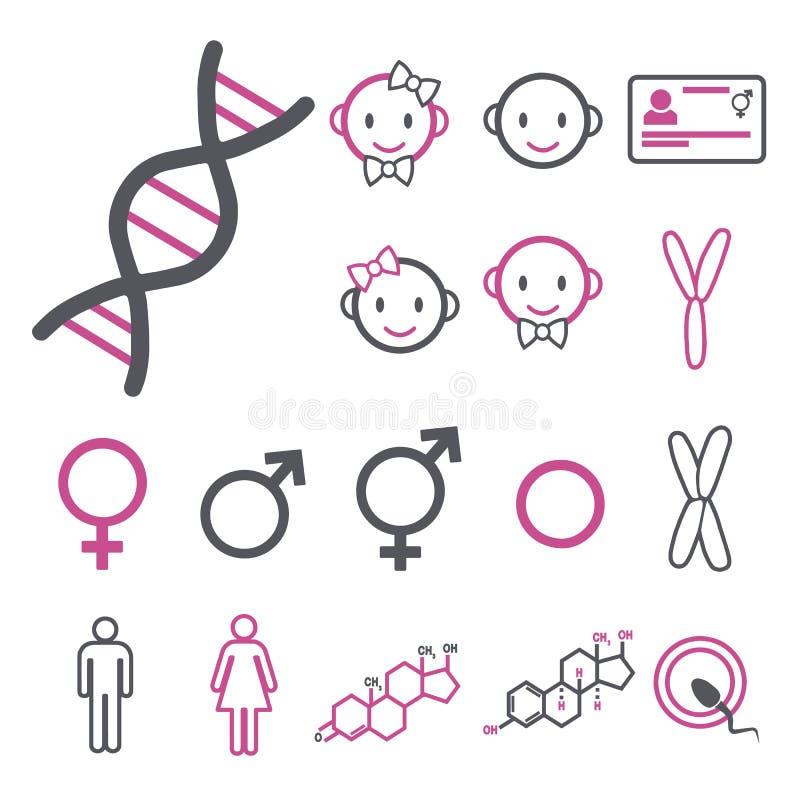 Vektorsymbolen ställde in för att skapa infographicsen släkt genuset, transgenderen och Intersex som DNA, kromosomer, man och kvi stock illustrationer