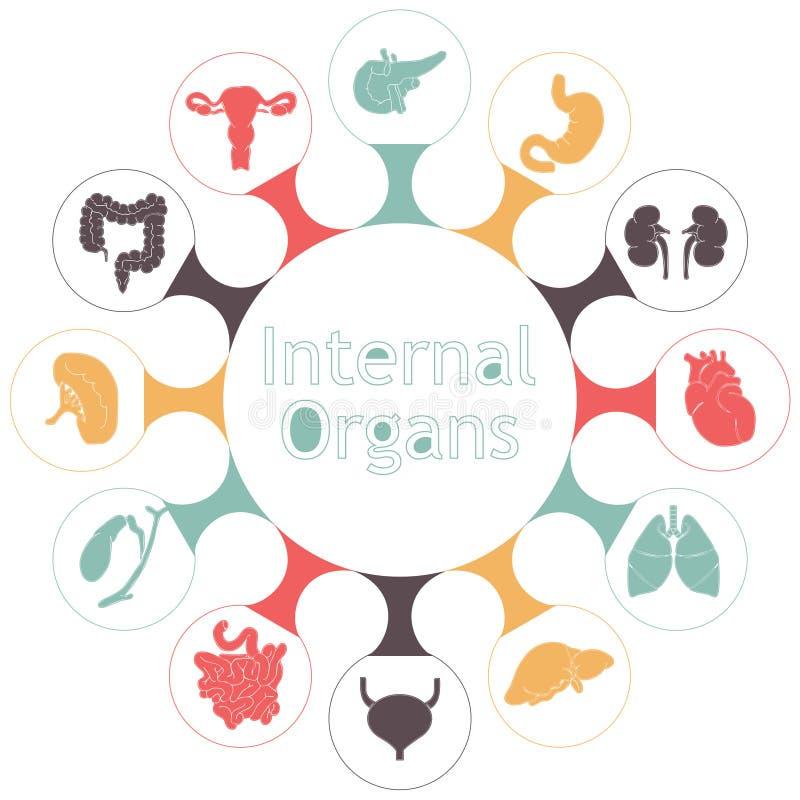 Vektorsymboler av inre mänskliga organ stock illustrationer