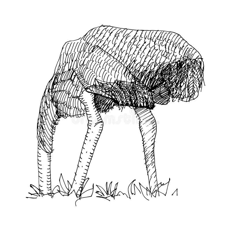 Vektorteckning av strutsen stock illustrationer