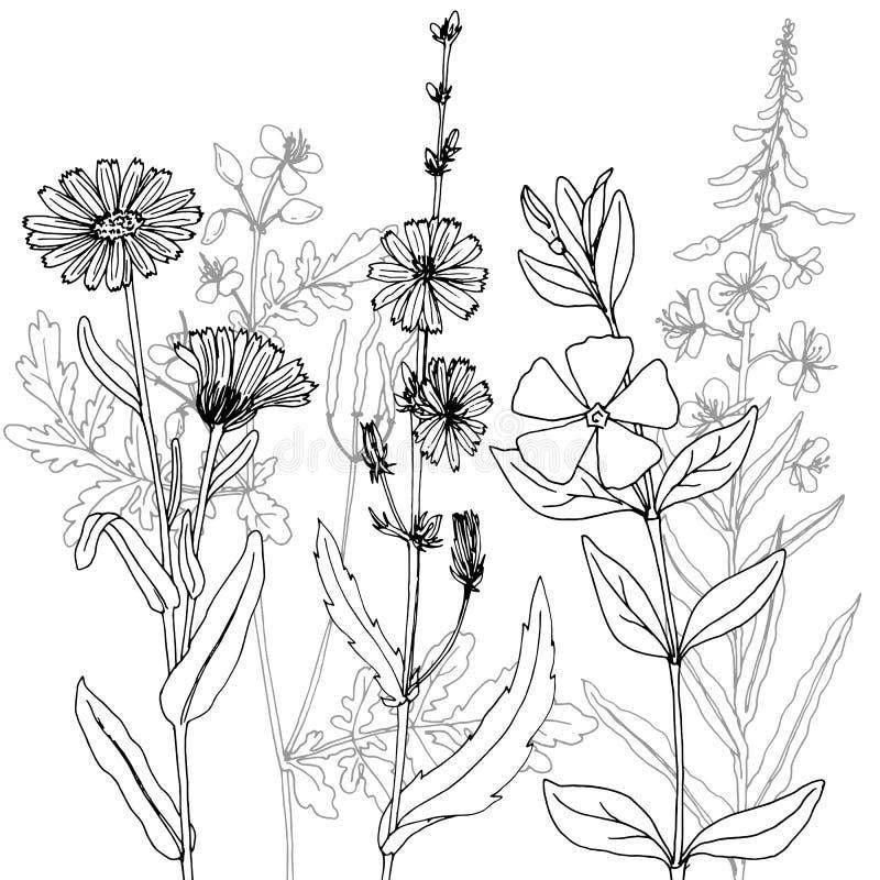 Vektorteckningsörter royaltyfri illustrationer
