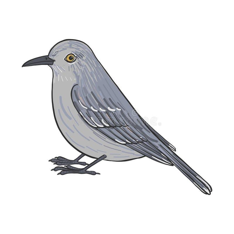 Vektorteckningshärmfågel stock illustrationer