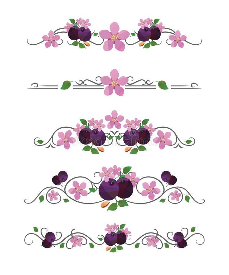 Vektortextavdelare med plommonblomningen royaltyfri illustrationer