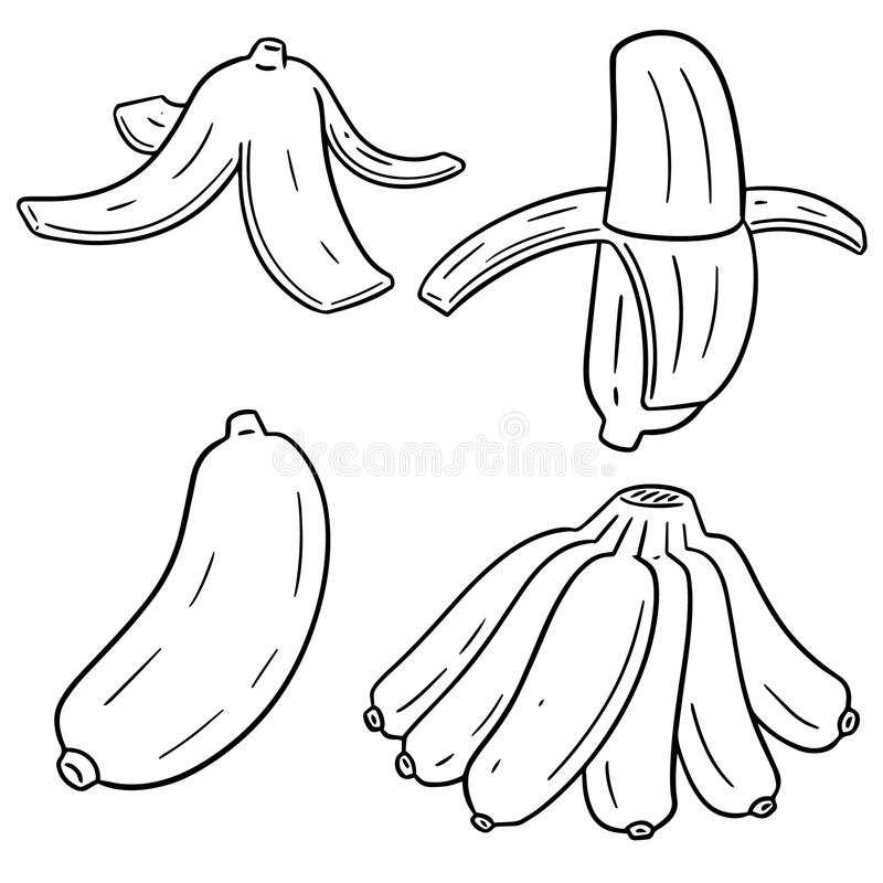 Vektoruppsättning av bananen royaltyfri illustrationer