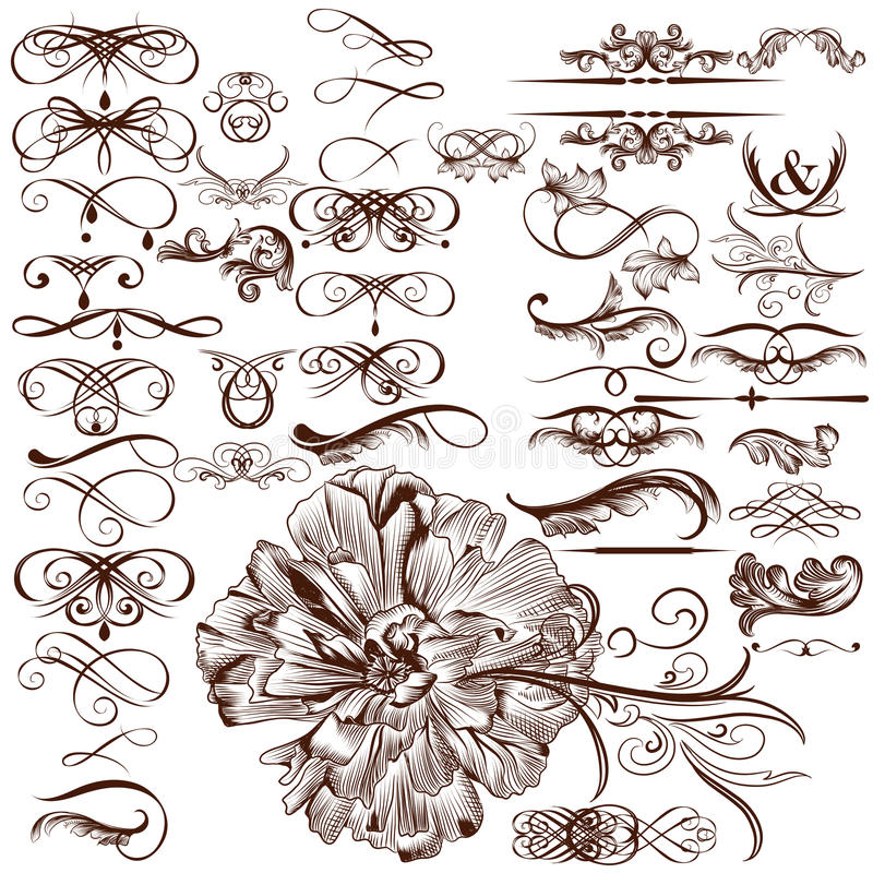 Vektoruppsättning av calligraphic krusidullar och prydnader vektor illustrationer