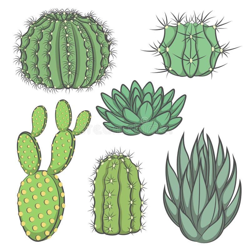 Vektoruppsättning av den kulöra kaktuns vektor illustrationer