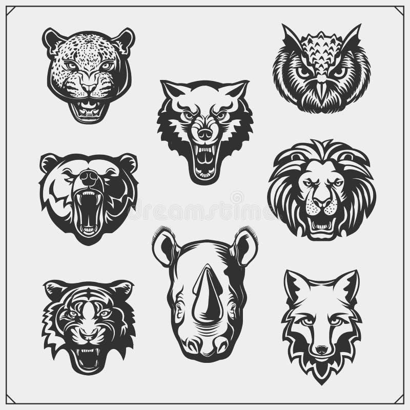 Vektoruppsättning av djurhuvudet Räv, varg, tiger, noshörning, björn, uggla, leopard och lejon vektor illustrationer