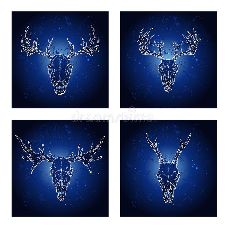 Vektoruppsättning av fyra illustrationer med utdragna skallar hjortar och älg för hand royaltyfri illustrationer