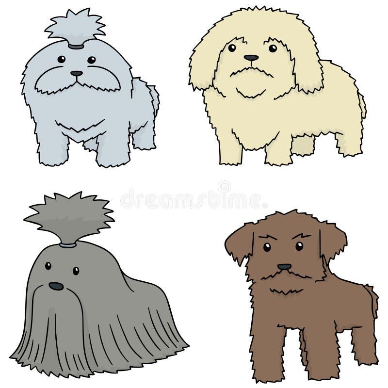 Vektoruppsättning av hunden, shihtzu stock illustrationer