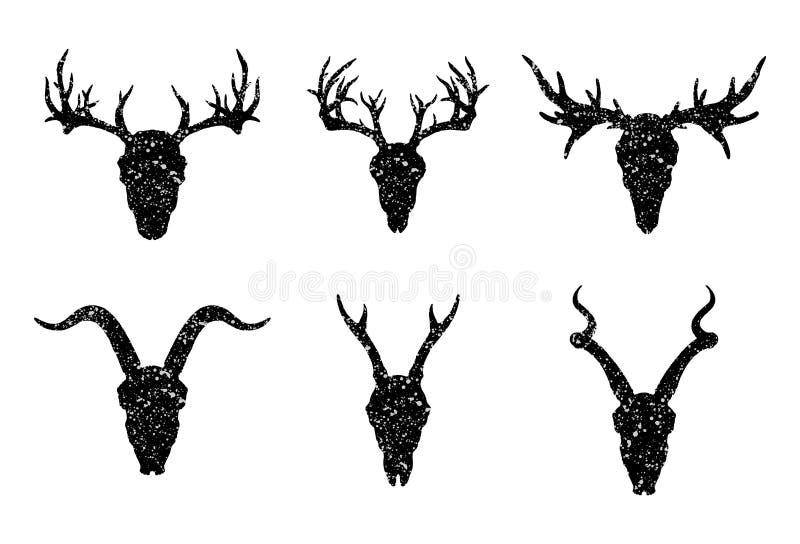 Vektoruppsättning av sex utdragna skallar för hand av horned djur: antilop, hjortar och get på vit bakgrund vektor illustrationer
