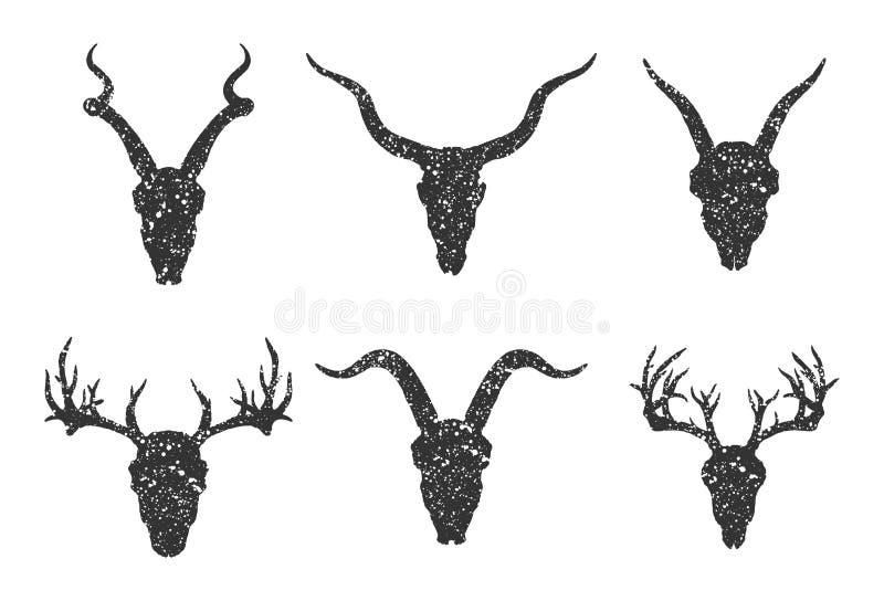 Vektoruppsättning av sex utdragna skallar för hand av horned djur: antilop, hjortar och getter på vit bakgrund royaltyfri illustrationer