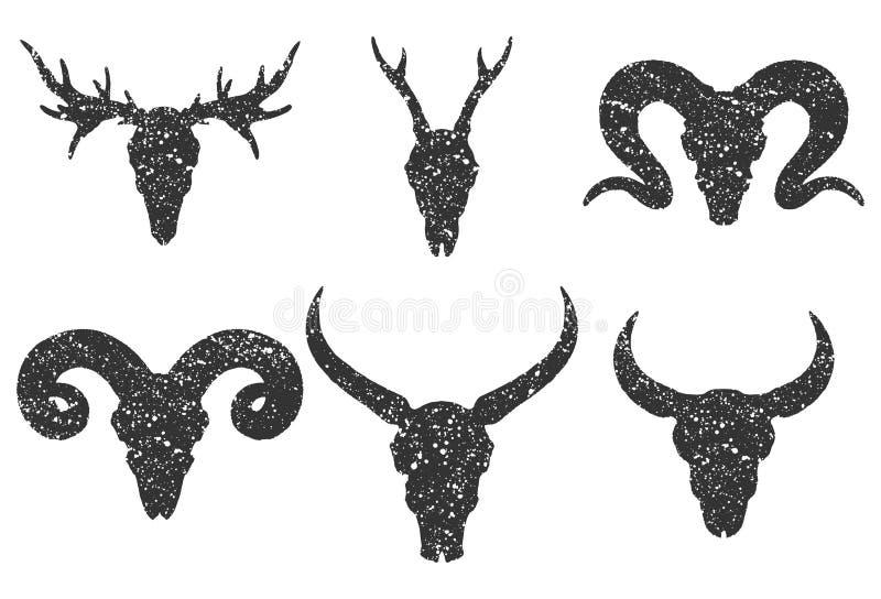 Vektoruppsättning av sex utdragna skallar för hand av horned djur: buffel, tjur, hjortar och RAM på vit bakgrund vektor illustrationer