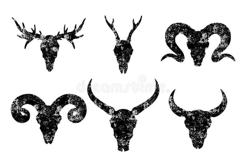 Vektoruppsättning av sex utdragna skallar för hand av horned djur: lös buffel, tjur, hjortar och RAM på vit bakgrund vektor illustrationer