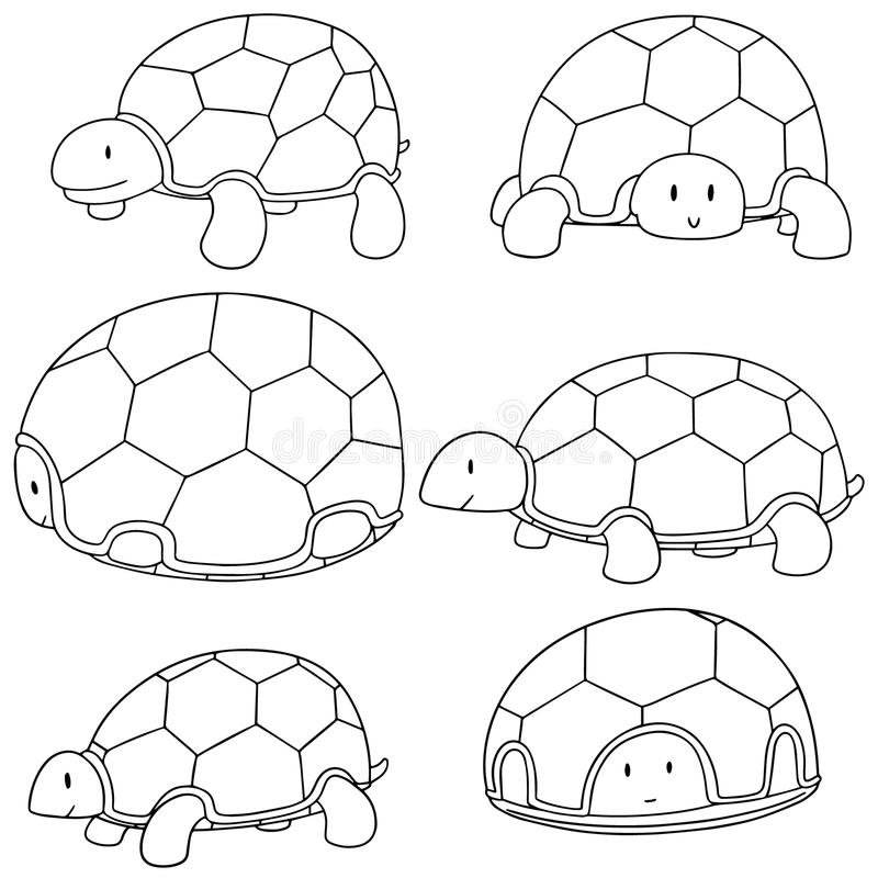 Vektoruppsättning av sköldpaddan vektor illustrationer