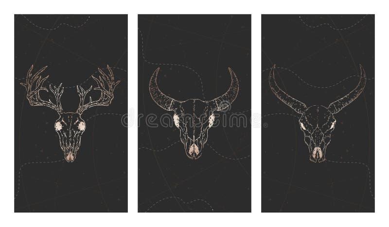 Vektoruppsättning av tre illustrationer med guld- skallar hjortar, tjur, buffel och grungebeståndsdelar på svart bakgrund royaltyfri illustrationer