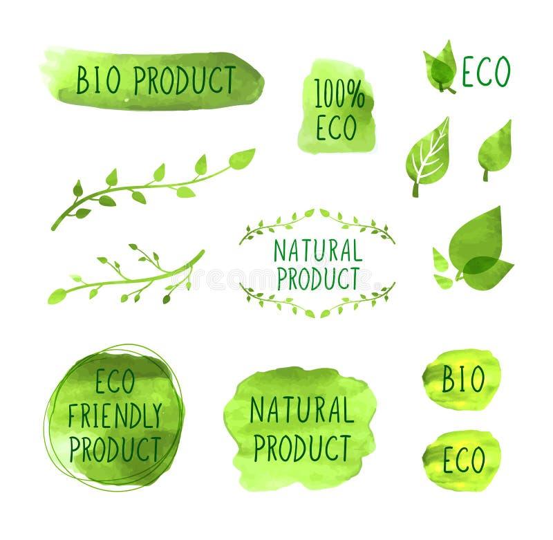 Vektoruppsättning av vattenfärg drog symboler, naturprodukter, organiskt sunt ätabegrepp, teckningssamling stock illustrationer