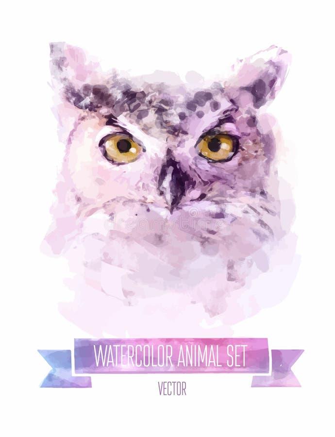 Vektoruppsättning av vattenfärgillustrationer gullig owl vektor illustrationer