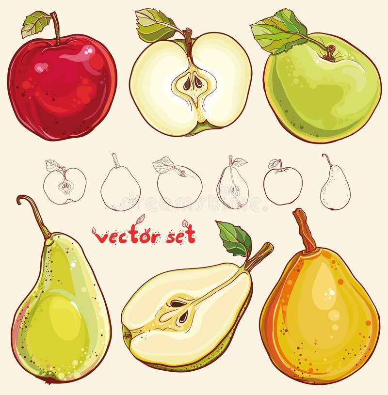 Vektoruppsättning med nya äpplen och päron royaltyfri illustrationer