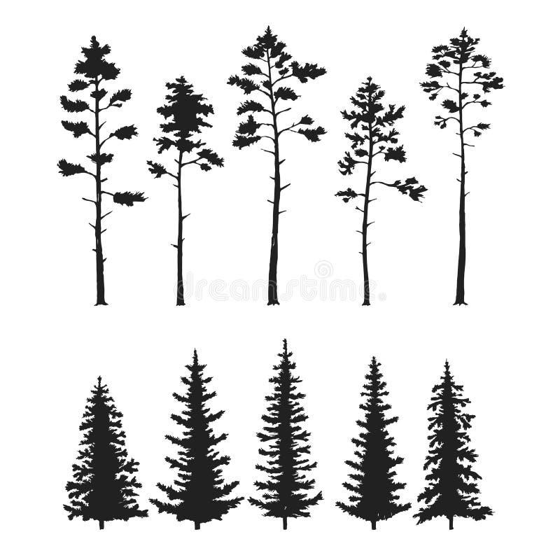 Vektoruppsättningen med sörjer träd som isoleras på vit bakgrund royaltyfri bild