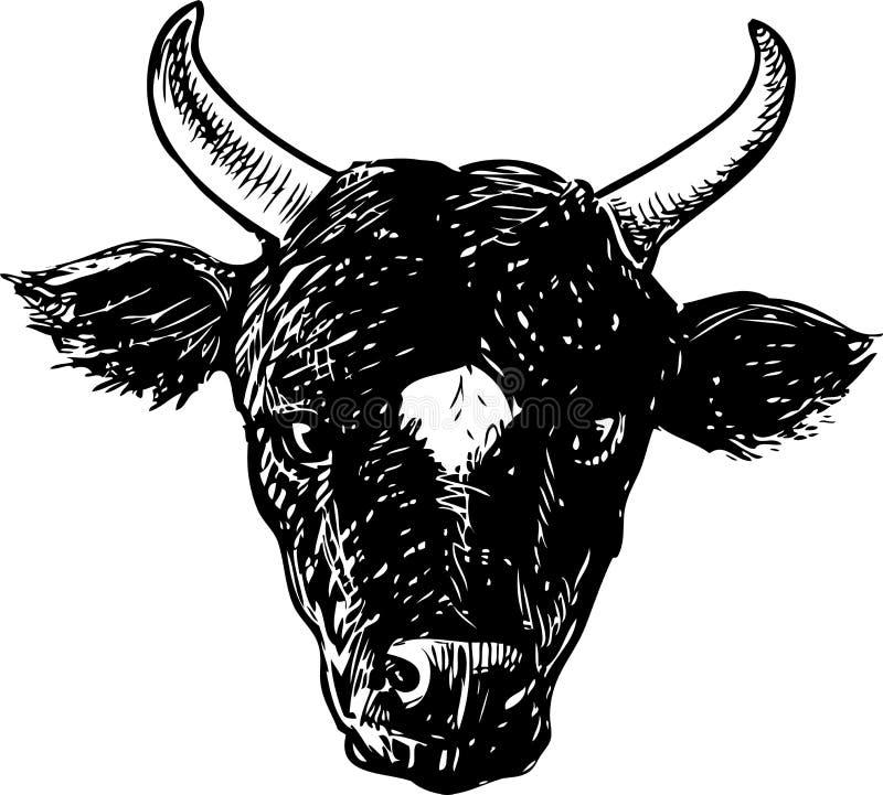 Vektorzeichnung des Kopfes eines schwarzen Stiers stock abbildung