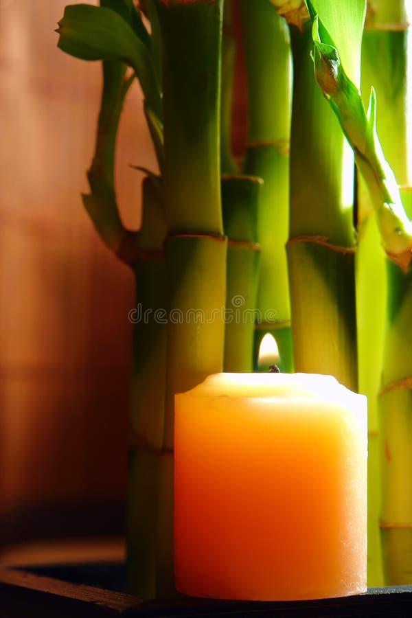 Vela ardiente con los vástagos de bambú para la meditación