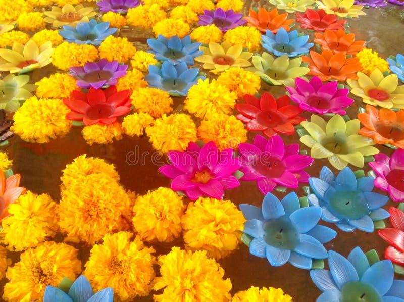 Vela de Lotus foto de archivo