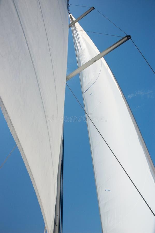 Vela dell'yacht immagine stock