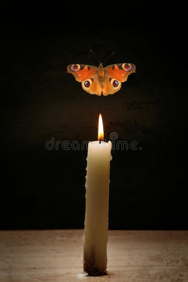 Vela e borboleta imagem de stock royalty free