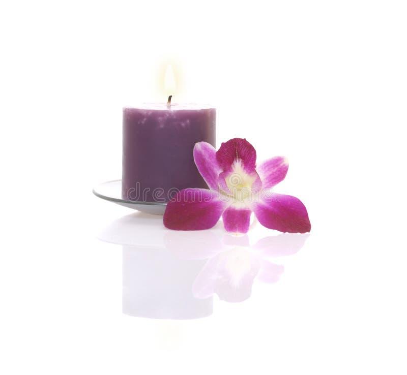 Vela e orquídea fotografia de stock