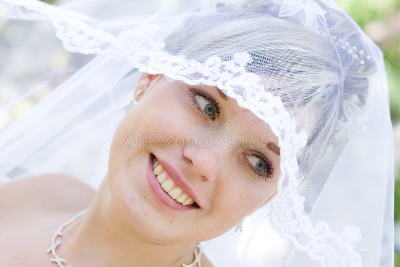 velare della sposa immagini stock