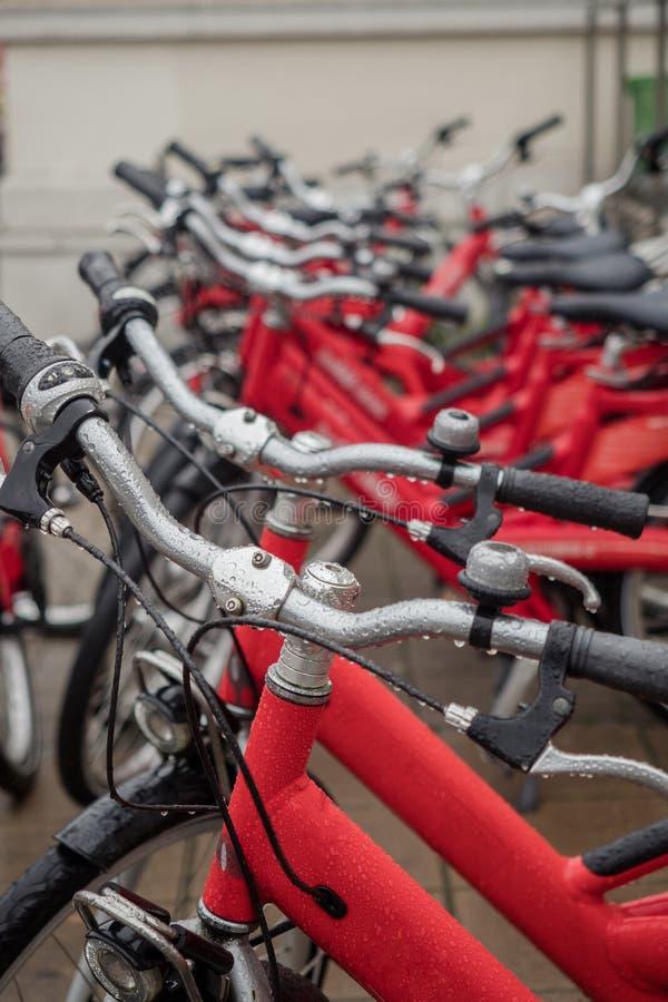 Vele fietsen stock afbeeldingen
