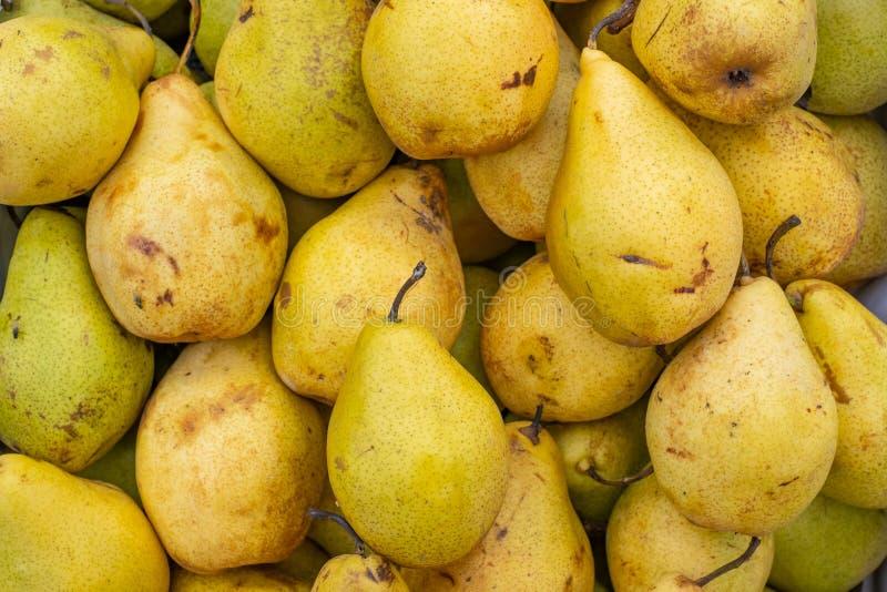 Vele gele peren na oogst stock foto