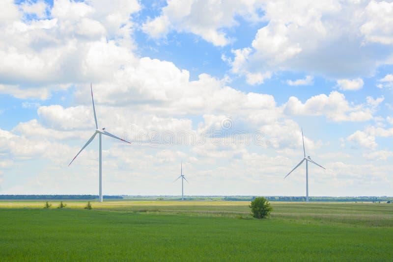 Vele grote en hoge windmolens bij zonnige dag op het groene gebied Alternatieve energiegenerators Windmolens bij zonsopgang Ecolo royalty-vrije stock foto
