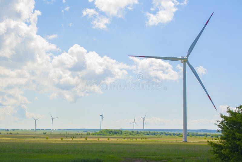 Vele grote en hoge windmolens bij zonnige dag op het groene gebied Alternatieve energiegenerators Windmolens bij zonsopgang Ecolo stock afbeeldingen