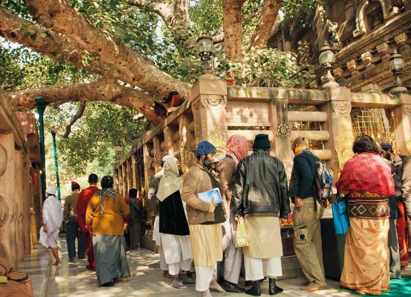 Vele mensen die van verschillende godsdiensten op de heilige boom van Gautama in Bodhgaya, India letten stock afbeelding